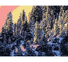 Winterland 40 Digital Image Photographic Print