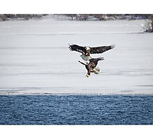 Eagle Dance Photographic Print
