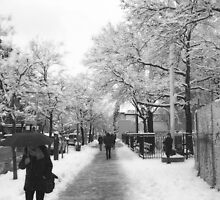 30th Avenue in the Snow by Bernadette Claffey