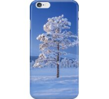 Snow covered trees iPhone Case/Skin