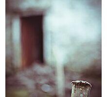 Door - Kerry Photographic Print
