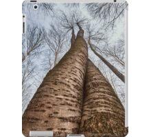 The embrace iPad Case/Skin