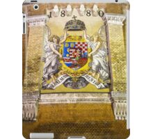 Budapest beauty  iPad Case/Skin