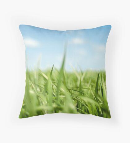 Oaten The Field Throw Pillow