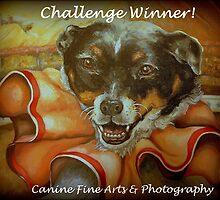 Challenge Winner Banner by Pam Humbargar