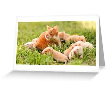 Golden hamster with her young litter on the lawn Greeting Card