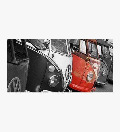 VW Campervans Photographic Print