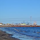 Pleasure Pier by Robert Brown