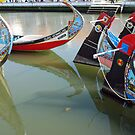 Moliceiro - the fishing-boats of Aveiro by Arie Koene