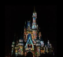Walt Disney World Light Show by emilymariee8