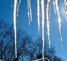 Winter Sun Catchers by michaelasamples
