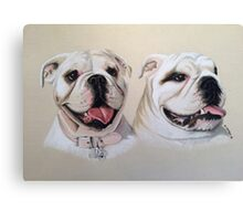Oakie & Julesy - British Bulldogs Canvas Print