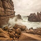 Pinnacles, Cape Woolamai, Phillip Island by Silvia Tomarchio