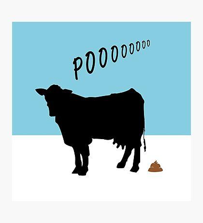 cow's poo Photographic Print