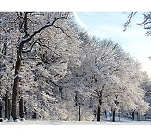 A Winter day in New York City  Photographic Print