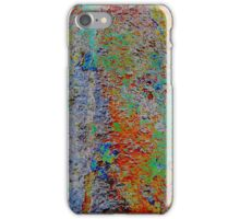 Colorful Rusty Case iPhone Case/Skin
