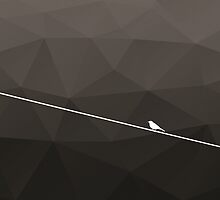 Bird On A Wire by MadNic