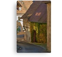 Burkheim, Kaiserstuhl - sunlight detail on vines Canvas Print