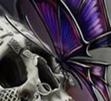 Life & Death Sticker