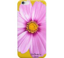 Pink Coreopsis  iPhone Case/Skin