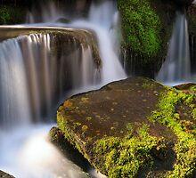 Smoky Mountains Cascade by Kenneth Keifer