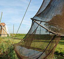 Dutch network by Arie Koene