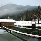 4 times H2O (water,snow,ice and mist) by Arie Koene