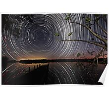 Fig Tree star trails Poster