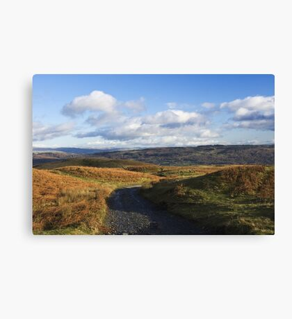 A distant view Canvas Print
