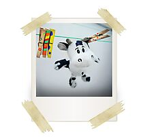 Cow on Wire Photographic Print