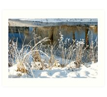 Cold and bright Art Print