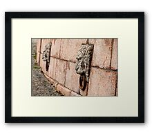 granite lion Framed Print
