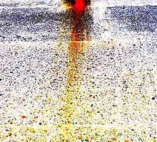 Unique Abstract Photography  by Vincent J. Newman