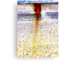 Unique Abstract Photography  Canvas Print