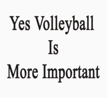 Yes Volleyball Is More Important  by supernova23