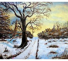 Bright Snow under the tree. Photographic Print