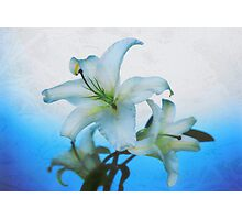 Winter flower from heavens Photographic Print