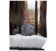 Jersey City, New Jersey, Dixon Mills, Wet Snow View Poster