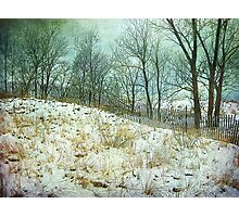 Trees Sky and Snow Fence   Photographic Print