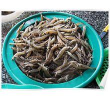 bowl of prawns Poster