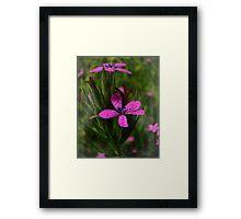 Comforting Wildflowers Framed Print