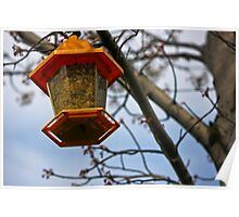 Spring Time Bird Feeder Poster