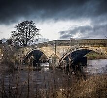 Bolton Abbey Bridge by Tony Shaw