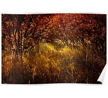 Autumn Reverie Poster