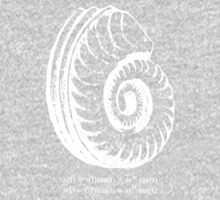 Spiral Shell with Math (white) One Piece - Long Sleeve