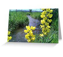A stream runs thru it Greeting Card