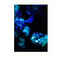 Midnight, Moonlight, Masquerede Art Print