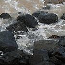 Rocky Coastline by Christina Backus