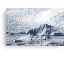 Cierva Cove with Iceberg & Glaciers  Canvas Print