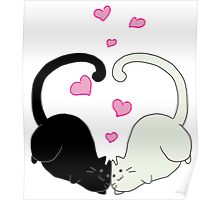Chubby Wubby Kitties Poster